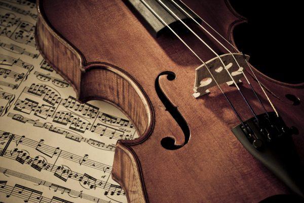 violino cremona adele sbernini